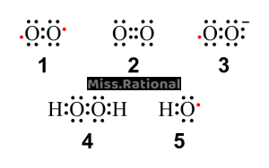 ROS活性氧类家族