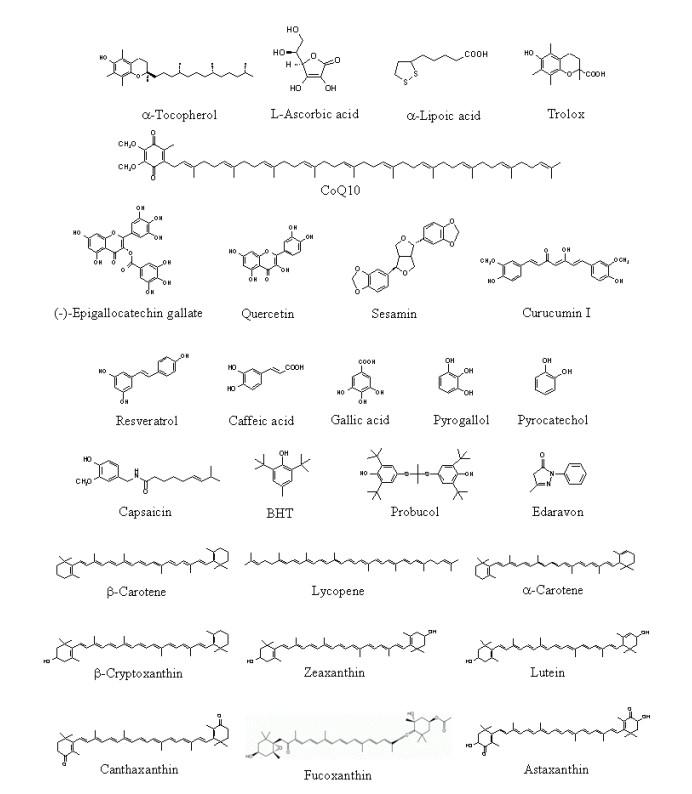 抗氧化剂家族