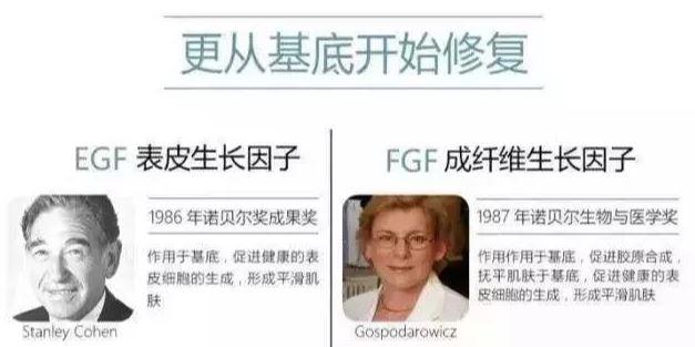 EGF发现人